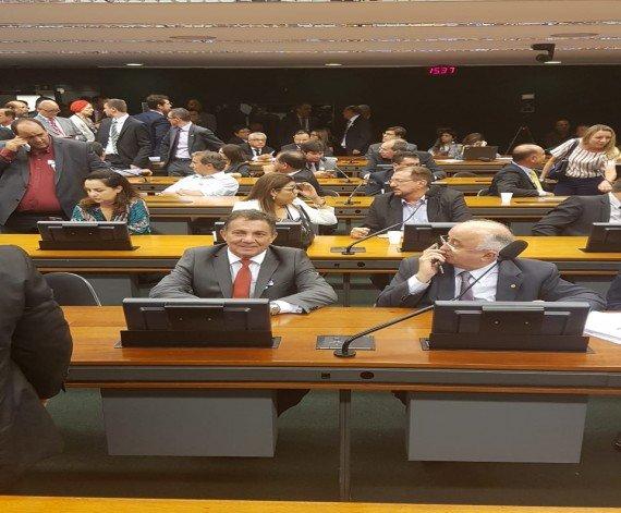 Tema agradece parlamentares pela aprovação do 1% no FPM na Câmara Federal