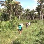 Maranhão obteve a quinta pior avaliação de transparência em informações sobre terras públicas ainda sem título de posse