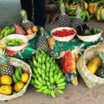 Projeto prioriza economia solidária em compras para alimentação escolar