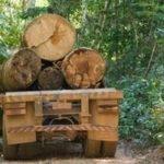 Policiais rodoviários federais são envolvidos no transporte ilegal de madeiras no Maranhão