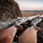 Propostas de senadores alteram legislação sobre armas de fogo