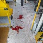Bandidos fazem arrastão durante assalto a ônibus na Avenida dos Franceses em São Luís