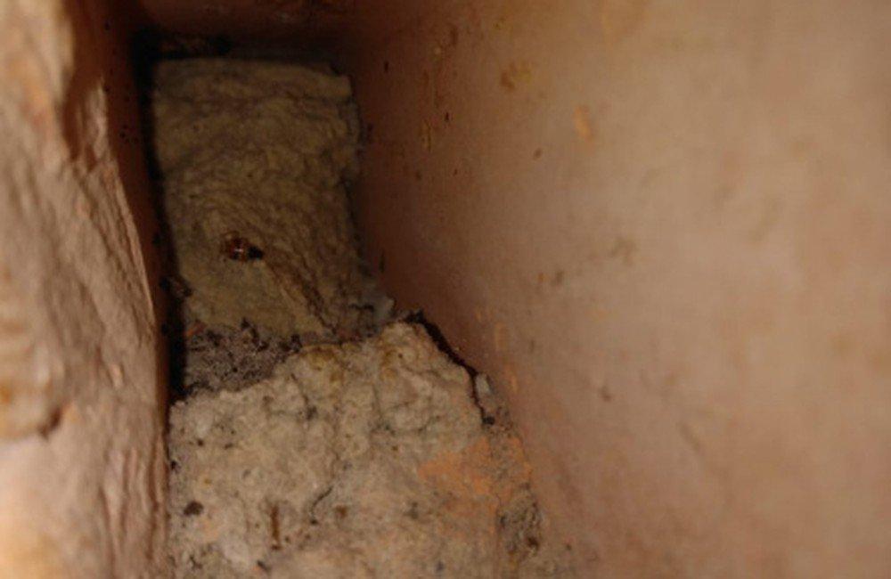 Túnel é encontrado em presídio feminino de Ananindeua, no PA