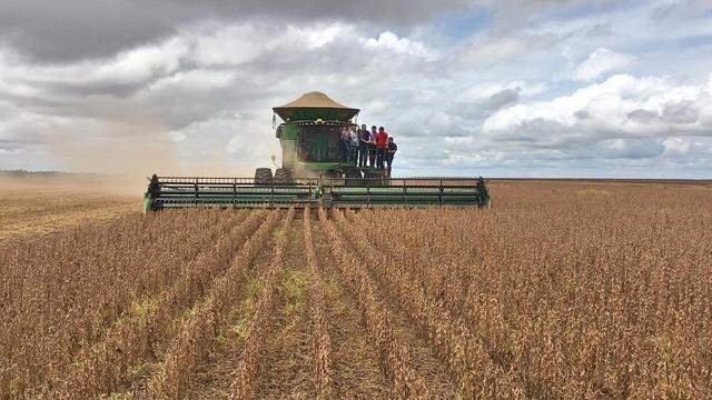 Maranhão plantou mais de 1 milhão de hectares de soja na safra 2019/20