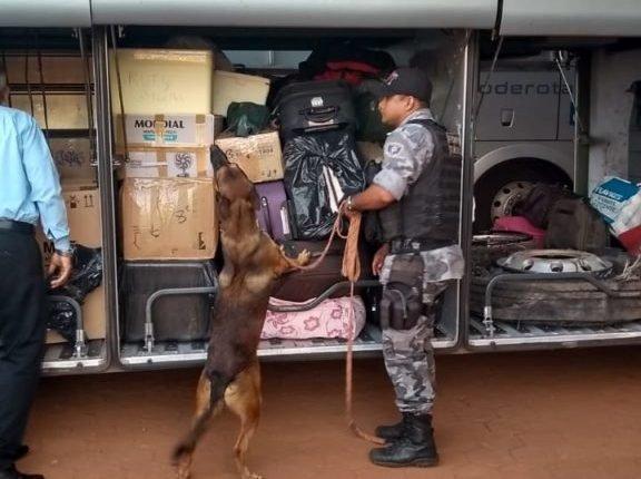 POLÍCIA MILITAR REALIZA OPERAÇÃO DE COMBATE AO TRÁFICO DE DROGAS EM ESTREITO E REGIÃO