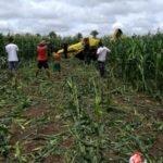 Avião monomotor faz pouso de emergência em uma roça de milho, na cidade de Governador Eugênio Barros