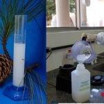 Embrapa/Covid-19 - Cientistas usam nanocelulose de pinus e de eucalipto como espessante para fabricação de álcool em gel